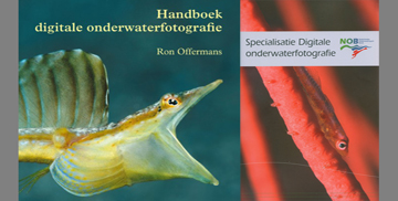 Underwater photography courses